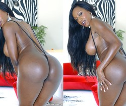 Diamond Jackson was Built for Taking a Big Black Cock