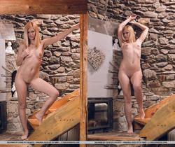 Delphine - Introspection 1 - The Life Erotic