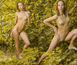 Ovta - Wild Girl 2 - Erotic Beauty