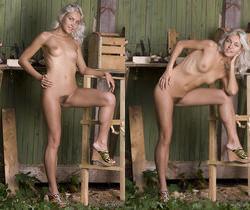 Kristy - Carpenter Helper - Erotic Beauty