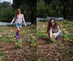 Mia Sollis - Pumpkin Patch - Girlfolio