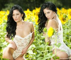 Barbara Desiree: Summer Sunflower