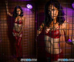 Destiny Loved Got Caged - Jessica Jaymes - Spizoo