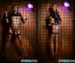 Carolina Sweets Dark Cage - Spizoo