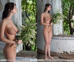Jasmine - Lin - Femjoy