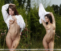 Wet Wet Wet - Magnolia