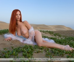 The Heat Is On - Ariel