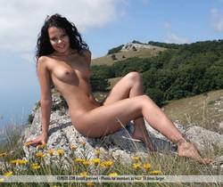 Wild Flower - Armida - Femjoy