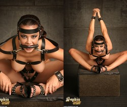 Sophia Santi is tied up and waiting for you to Punish her