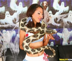 Candy - Pure Halloween - Pure 18