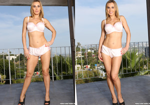 Sinn Sage and Tanya Tate from Here Cums the Bride