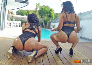 Kesha Ortega - Ass Sisters