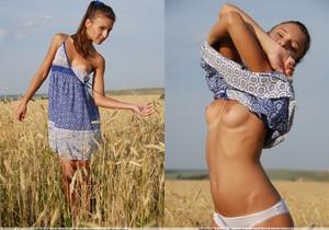 Last Days Of Summer - Nikki D.