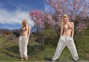 Almond Blossom - Tinna