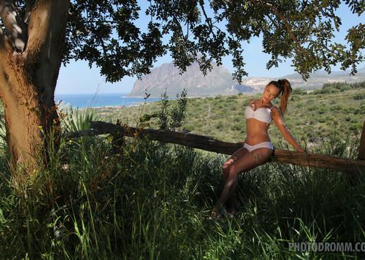 Vivien - The Tree Of Life - PhotoDromm - Solo Hot Gallery