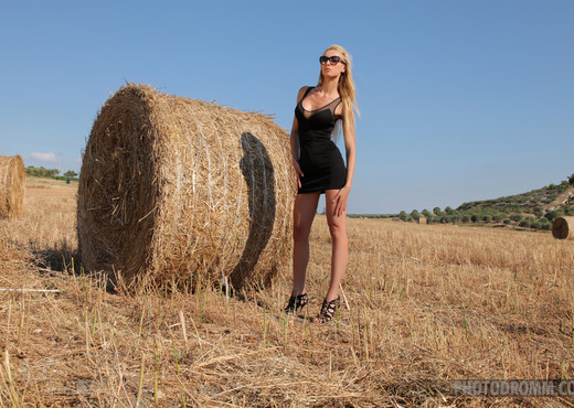 Brigitte - The Harvest - PhotoDromm - Solo Nude Pics