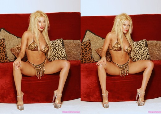 I love glamorous shoots! - Gina Lynn - Pornstars Picture Gallery