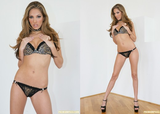 Jenna Haze very sexy and shedding off her clothes - Pornstars Hot Gallery