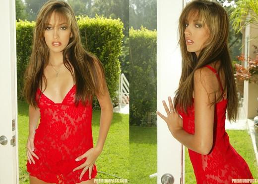 Jenna Haze - Pornstars Image Gallery