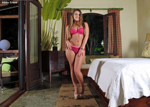 Abby Cross - InTheCrack - Pornstars Nude Pics