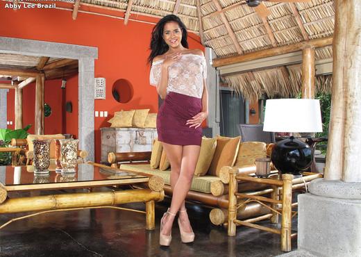 Abby Lee Brazil - InTheCrack - Pornstars Nude Gallery