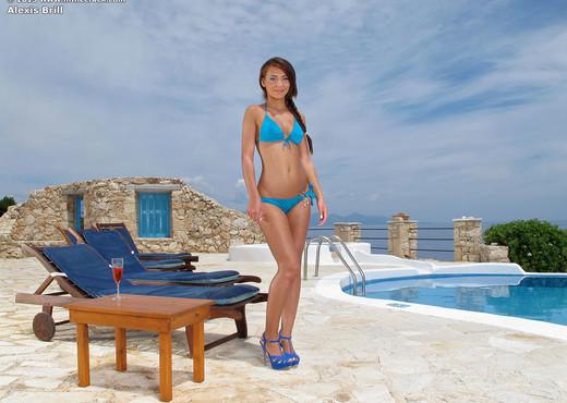 Alexis Brill - InTheCrack - Pornstars Nude Pics