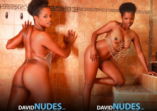 Wet Dream - Alli - David Nudes - Ebony Nude Gallery