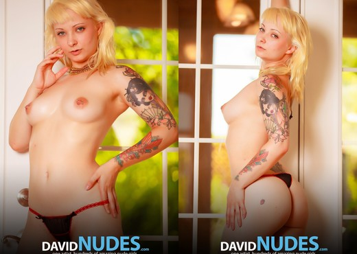 French Doors - Lola - David Nudes - Solo TGP