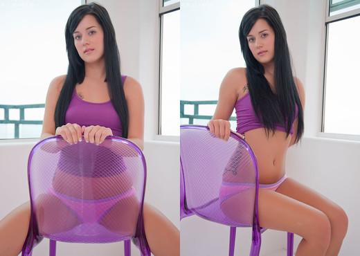 Hayley Hanes - Purple - Toys Image Gallery