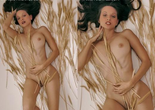 Sanja - Wheat - Solo Picture Gallery