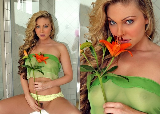 Jesse Capelli - Orange Lily - Solo Image Gallery