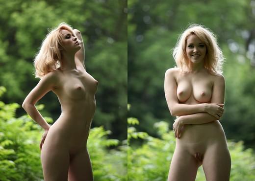 Thickets - Alissa - Zemani - Solo Nude Gallery