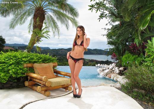 Abby Cross ass on the beach - Pornstars HD Gallery