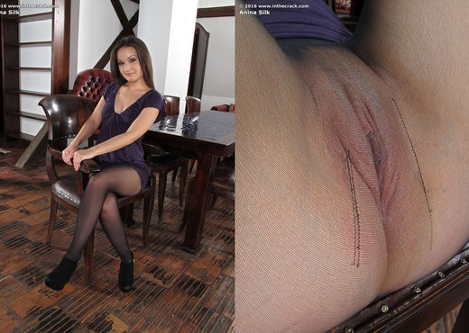 Anina Silk - Pantyhose and a ribbed vibrator - Pornstars Image Gallery