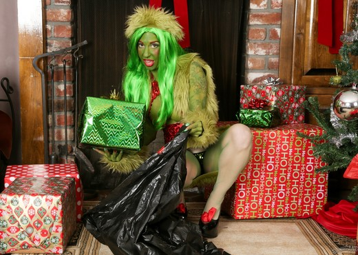 How The Grinch Gaped Christmas - Chapter 2 - Hardcore HD Gallery