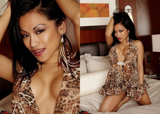 CJ Miles - Sleeping With A Sex Kitten - Asian Porn Gallery
