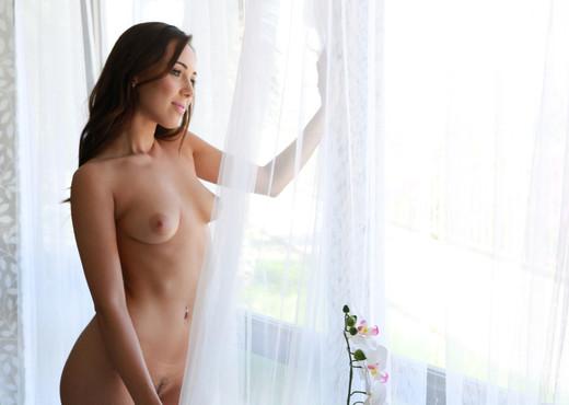 Jenna Sativa, Carter Cruise - Lesbian Lust - Nubile Films - Lesbian Nude Pics