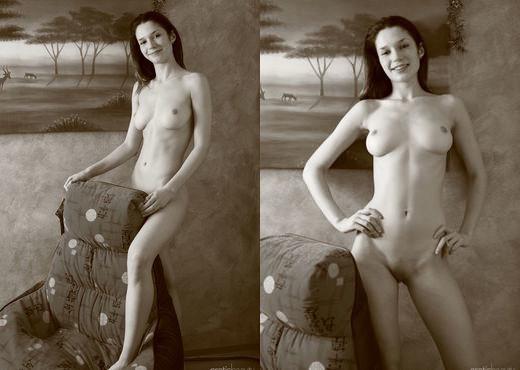 Presenting Sashha - Erotic Beauty - Solo TGP