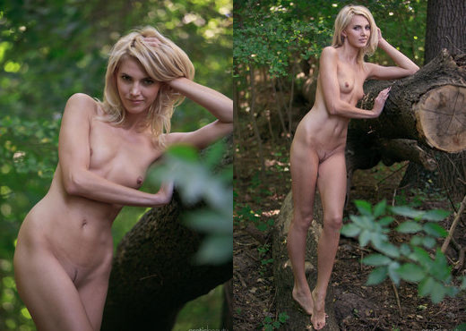 Lilly A - With The Trees - Erotic Beauty - Solo Image Gallery