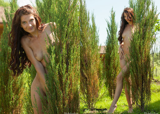 Margaux - Chalete - Rylsky Art - Solo Image Gallery