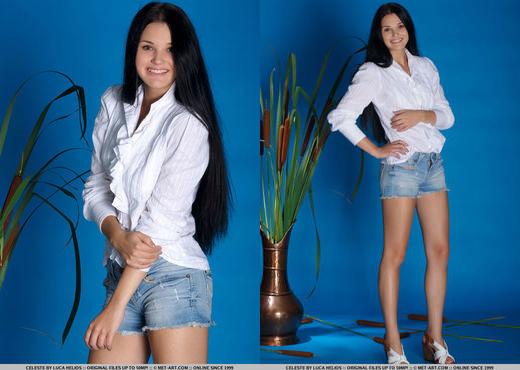 Presenting Celeste - MetArt - Solo TGP