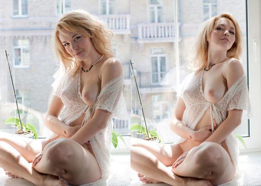 Alisa G - The Master Bedroom - Erotic Beauty - Solo Hot Gallery