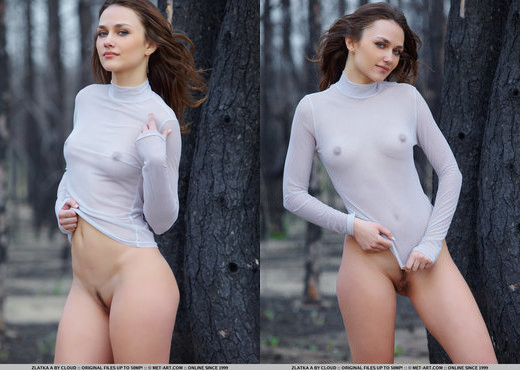 Zlatka A - Ageras - MetArt - Solo Sexy Gallery