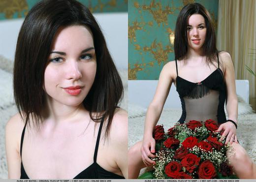 Alina J - Presenting Alina - MetArt - Solo Sexy Gallery
