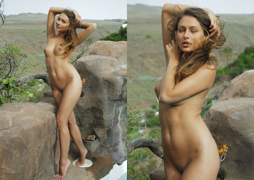Yarina A - BORDER - Eternal Desire - Solo Picture Gallery