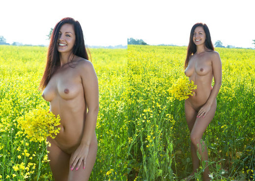 Darselle - In The Fields 1 - Erotic Beauty - Solo Image Gallery