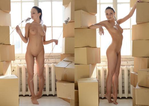 Presenting Katoa - Erotic Beauty - Solo Nude Gallery