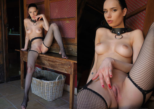 Dita V - AMO - Eternal Desire - Solo Picture Gallery