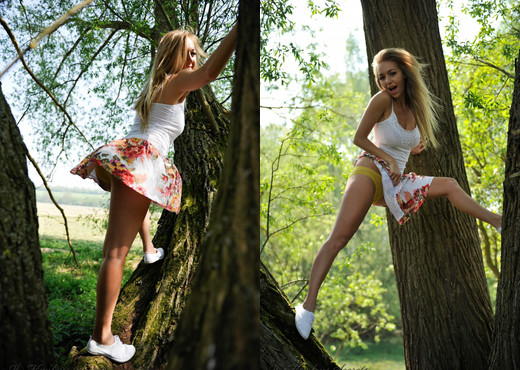 Hayley Marie Coppin - Climb A Tree - Hayley's Secrets - Solo Picture Gallery