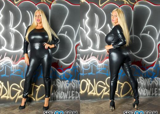 Karen Fisher 3 Some - she takes on 2 black dicks - Spizoo - MILF TGP